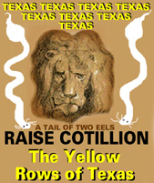images/1041615565_TheYellowRowsofTexas.jpg by Ray Johnson Rain Rien Nevermind